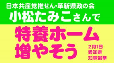 Tamiko_buner_03s300x166
